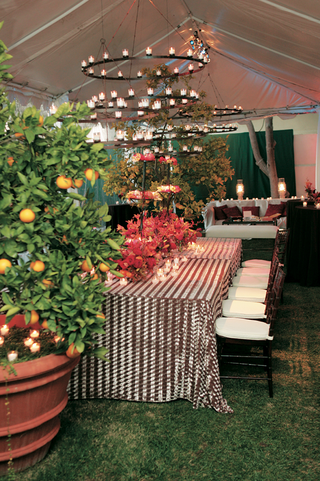 outdoor-tent-reception-with-iron-chandelier-and-greenery
