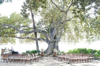 hawaii-wedding-under-banyan-tree-with-wood-chairs-wine-barrel-altar-and-fresh-flowers