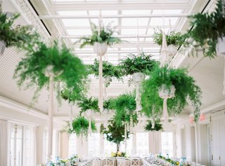 wedding-reception-california-style-ferns-hanging-over-two-long-banquet-tables-in-macrame-holders