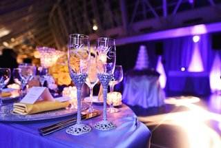 bride-and-grooms-champagne-flutes-with-silvery-jeweled-stems-couples-names-at-adler-planetarium