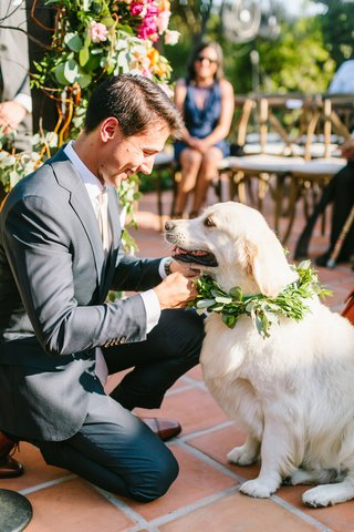 wedding-ceremony-outdoor-hummingbird-nest-ranch-pet-friendly-golden-retriever-dog-with-greenery
