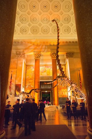 wedding-cocktail-hour-at-the-american-museum-of-natural-history-ny