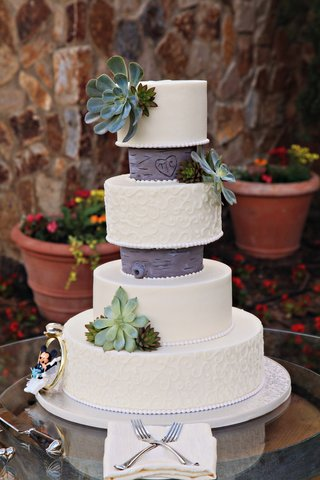 four-layer-cake-with-succulents-and-disneys-mickey-mouse