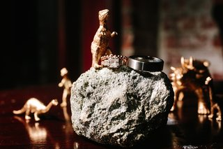 wedding-rings-on-rock-with-gold-dinosaur-figurines
