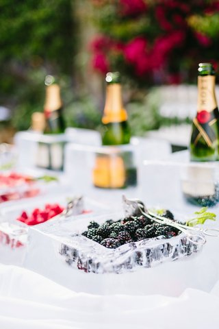wedding-ceremony-champagne-served-in-ice-bar-with-blackberry-strawberry-raspberry-champagne-moet