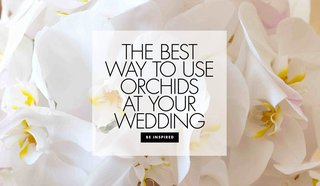 different-ways-to-use-orchids-in-your-wedding-decor