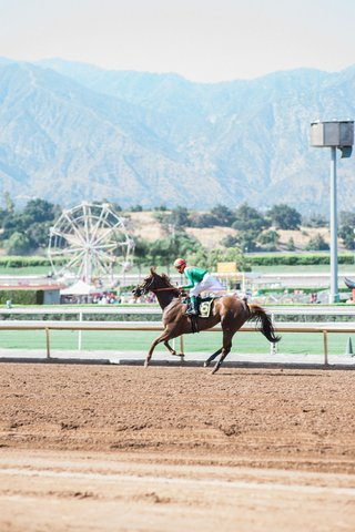 jockey-on-top-of-brown-horse-at-santa-anita-race-track-california-wedding-venue-ideas-ferris-wheel