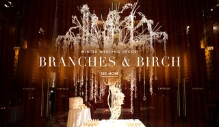 winter-wedding-ideas-using-birch-bark-and-tree-branch-decorations