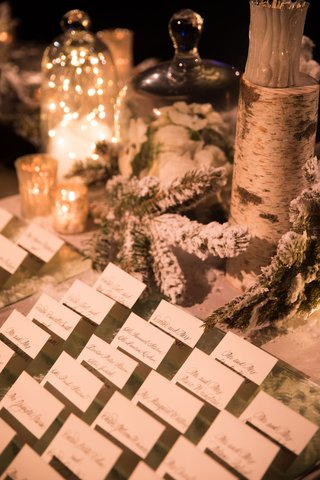 wedding-winter-theme-flocked-snowy-branches-evergreen-birch-candles-escort-cards