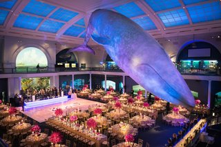 wedding-reception-with-a-purple-palatte-at-the-american-museum-of-natural-history