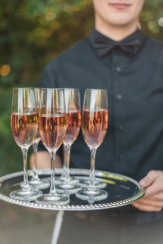 wedding-reception-jillian-murray-and-dean-geyer-server-with-black-bow-tie-holding-tray-of-rose