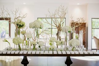 escort-card-table-with-manzanita-branches-white-flowers-hydrangea