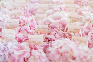 calligraphy-on-white-escort-cards-on-bed-of-pink-hydrangea-display