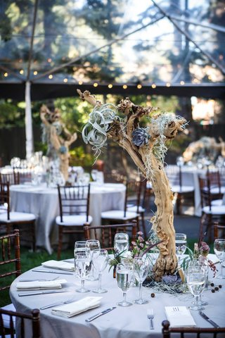 branch-centerpieces-with-blue-succulents-moss