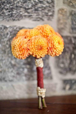 bridesmaids-bouquet-of-orange-dahlias-wrapped-in-burgundy-fabric