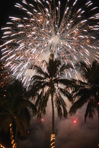 destination-wedding-in-mexico-palm-trees-with-string-lights-and-large-firework-show-in-sky