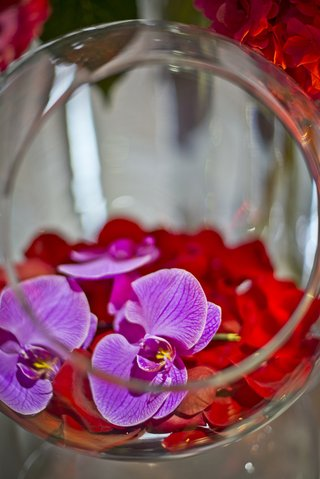open-glass-orb-filled-with-red-rose-petals-and-purple-orchid-blossoms