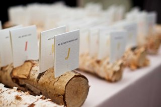 ivory-seating-assignments-at-wedding-in-rustic-birch-branch