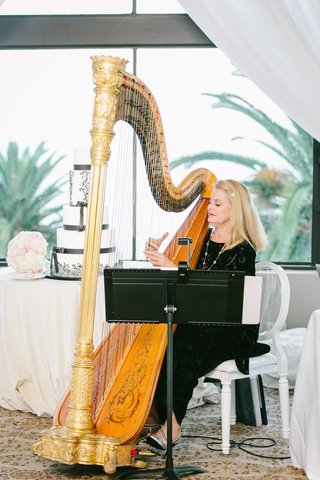 harpist-performs-at-wedding-live-music-at-wedding-harpist-at-cocktail-hour