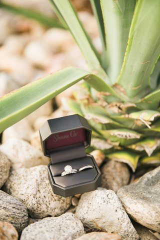 a-brides-wedding-band-and-engagement-ring-next-to-grooms-wedding-band-in-box-outside-on-rocks-plant
