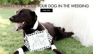 discover-ways-to-include-your-dog-in-the-wedding-even-if-pets-arent-allowed-at-the-ceremony-or-re