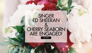 singer-ed-sheeran-and-cherry-seaborn-are-engaged