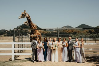 bride-with-mismatched-bridesmaids-and-bridesmen-in-front-of-stanley-the-giraffe-at-saddlerock-ranch
