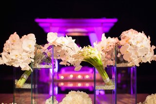 purple-wedding-lighting-and-cube-displays-of-orchids