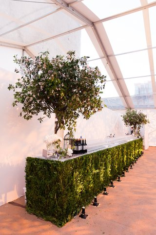 bar-at-wedding-made-of-green-leaves-and-trees