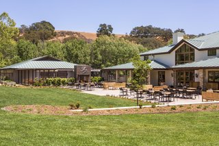 green-grass-lawn-at-fess-parker-winery-vineyard