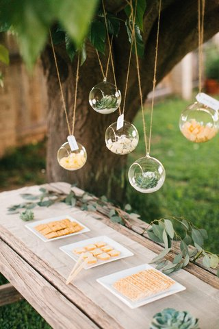 cheese-cubes-and-succulents-in-terrariums-with-cracker-trays
