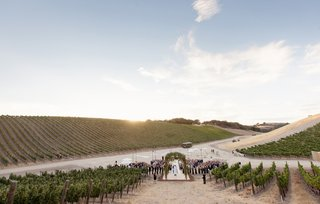 ceremony-in-the-middle-of-a-vineyard