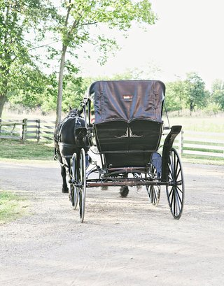 farm-wedding-with-a-vintage-black-horse-drawn-carriage